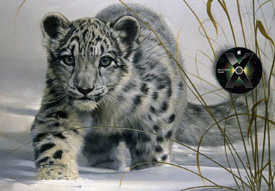 mac_os_x_snow-leopard_art