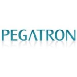 Se dan a conocer las causas del accidente en planta de Pegratron 3