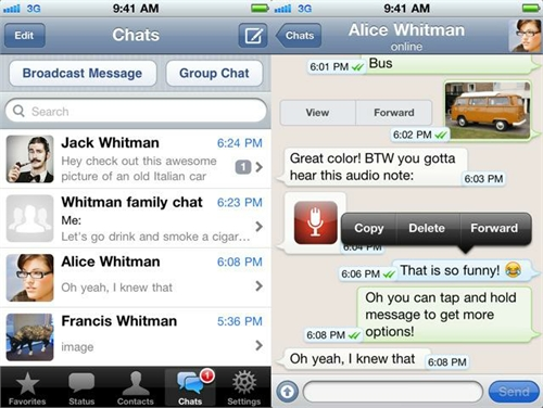 WhatsApp Messenger ahora se paga anualmente en iOS 2