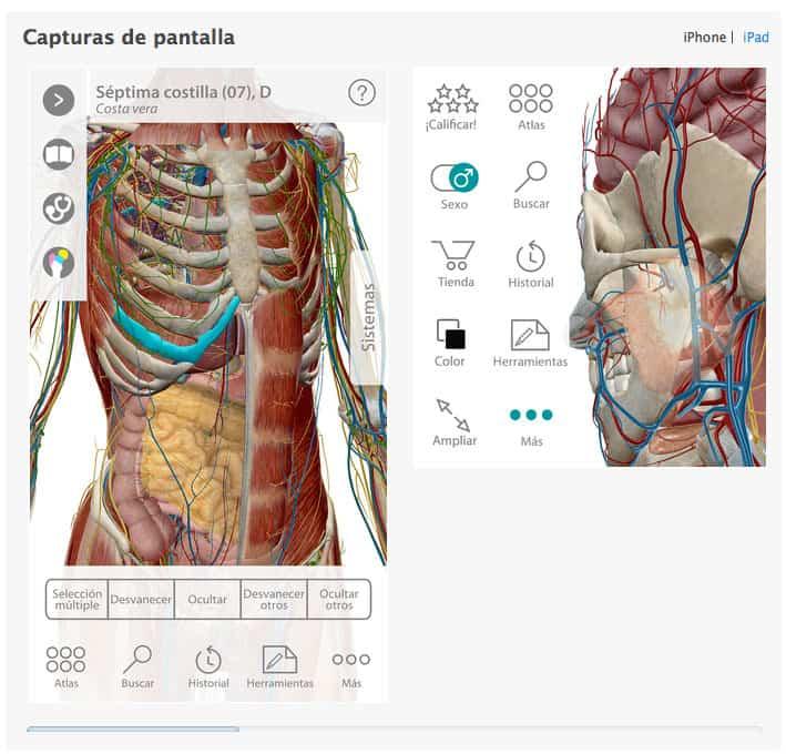 Captura pantalla Diccionario Linguee